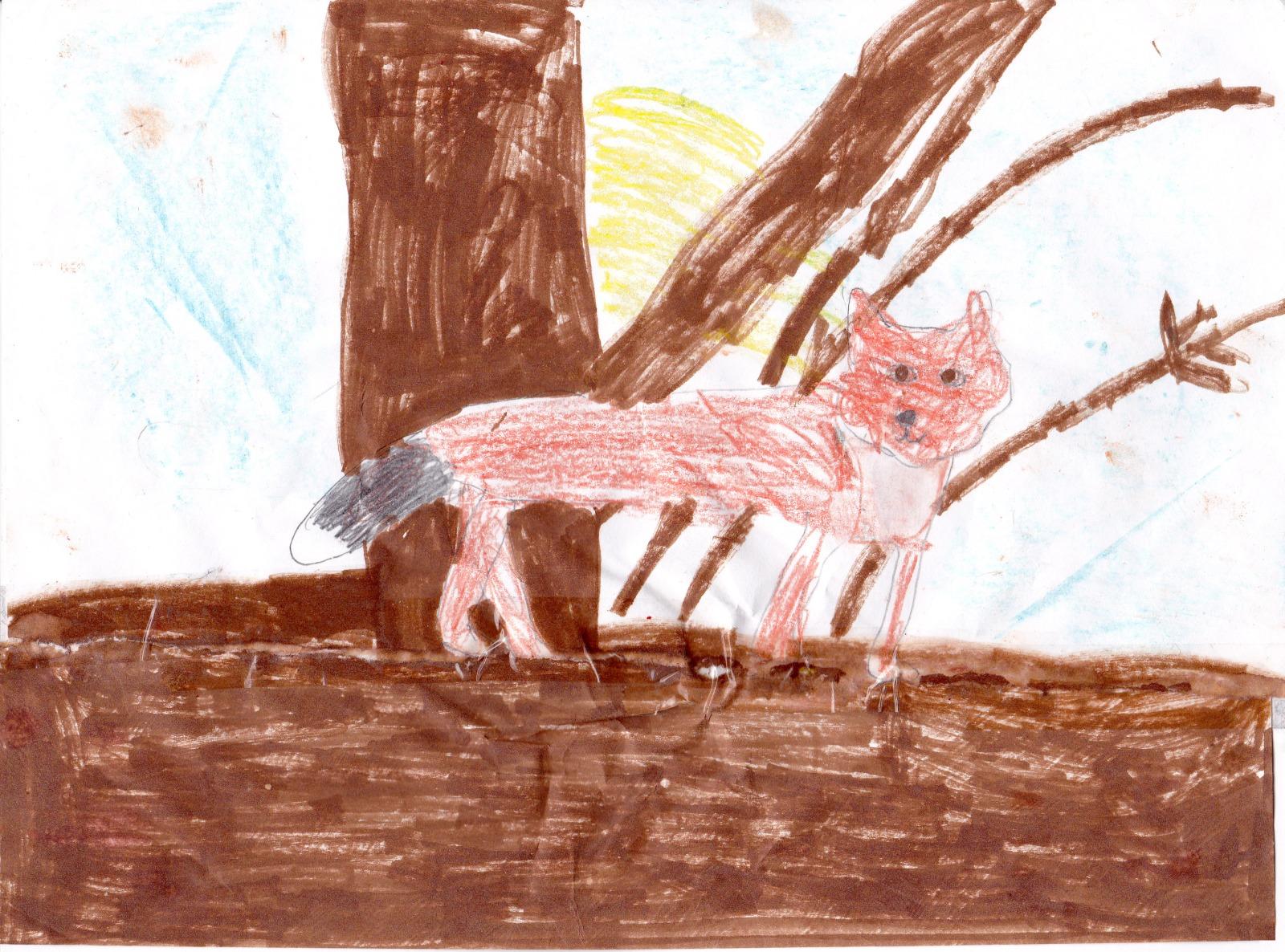 Fox, artwork by Natalie Carlson