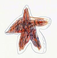 Starfish - C.Thiesfeld