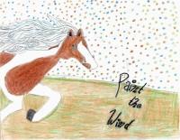 Paint The Wind - M.Rodriguez