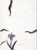 Blackbird Vol 2 - R.D.Johannsen