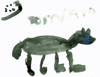 Tornado, Zorro's Horse