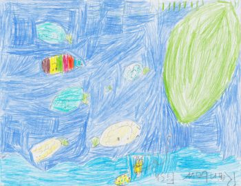 Richard Spenser, Age 9, Rainbow Fish